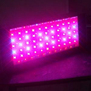 led-kweeklamp-2