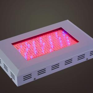 led-kweeklamp